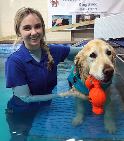 Ruby at 4 Paws Hydrotherapy Centre Ringwood