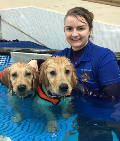 Tori at 4 Paws Hydrotherapy Centre Ringwood